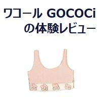 133.gococi-review_00